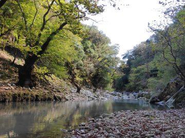Acheron River Tour